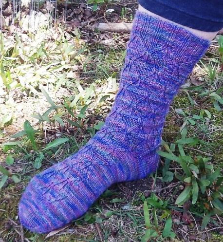 Pine Cone Socks - Copy
